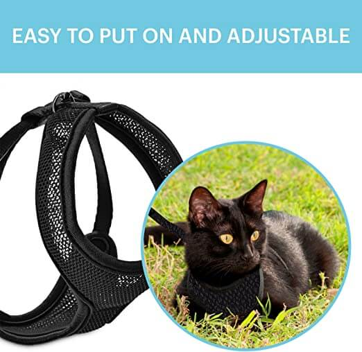 9 Best Cat Harness You Can Purchase For Your Cat
